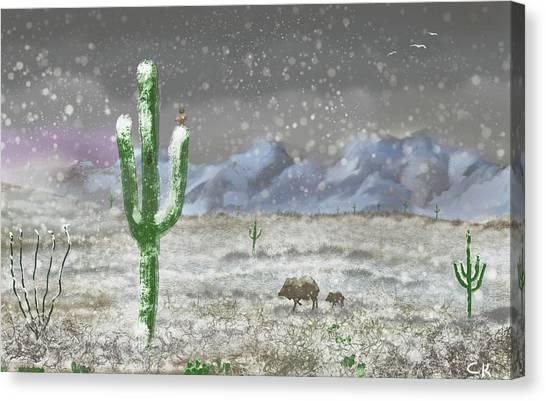 Arizona Blizzard Canvas Print