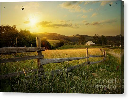 Farmland Canvas Print - Art Rural Landscape. Field And Grass by Konstanttin
