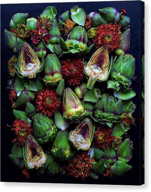 Artichoke Art Canvas Print