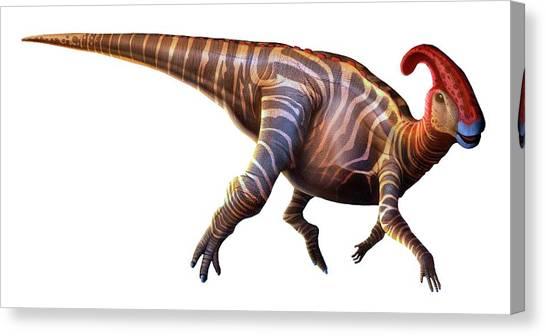 Artwork Of A Parasaurolophus Dinosaur Canvas Print by Mark Garlick