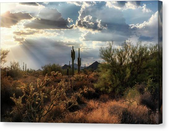 Canvas Print - As The Suns Starts To Set On The Sonoran  by Saija Lehtonen
