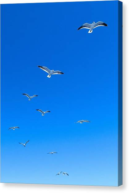 Ascending To Heaven Canvas Print