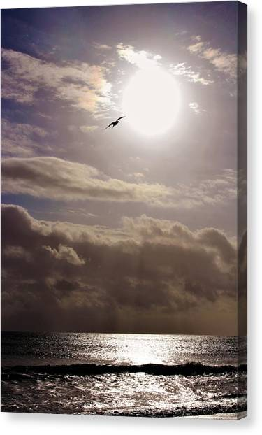 Canvas Print - Ascension  by Mindy Newman