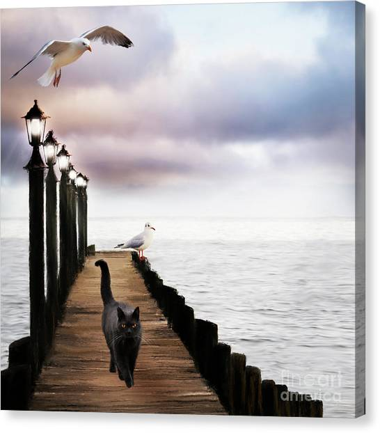 At The Jetty Canvas Print