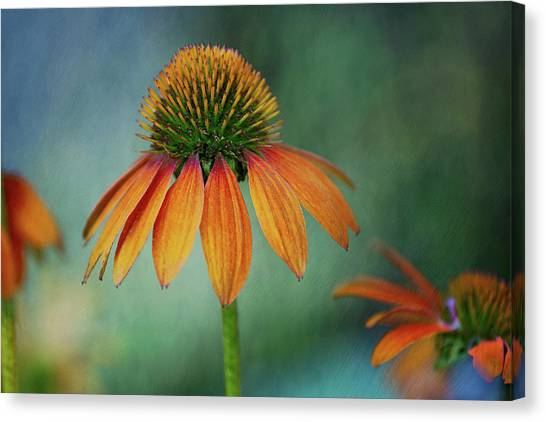 Canvas Print featuring the photograph Attracting Attention by Dale Kincaid