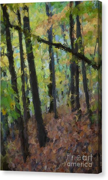 Autumn Afternoon Canvas Print by David Boudreau