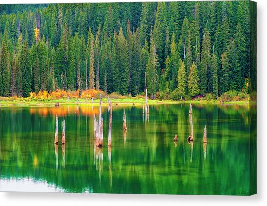 Canvas Print featuring the photograph Autumn At Goose Lake Gifford Pinchot National Forest by Dee Browning