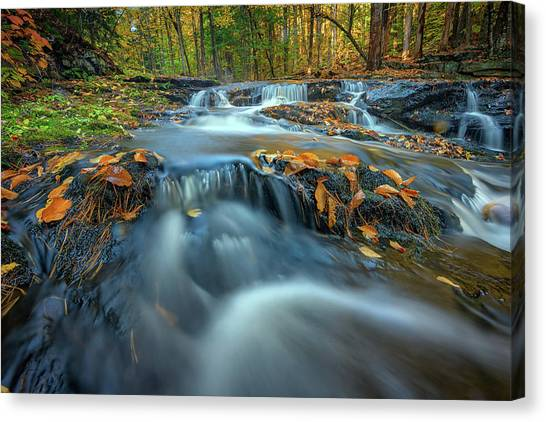 Canvas Print featuring the photograph Autumn Cascade In Vaughan Woods by Rick Berk