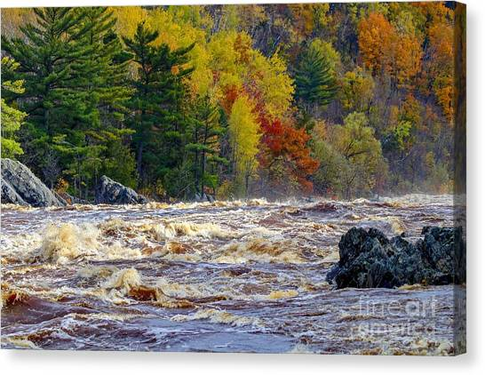 Autumn Colors And Rushing Rapids   Canvas Print