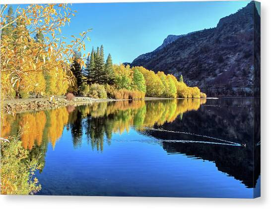 June Lake Canvas Print - Autumn Euphoria At Silver Lake by Donna Kennedy
