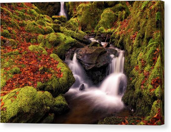 Canvas Print featuring the photograph Autumn Falls by Elliott Coleman