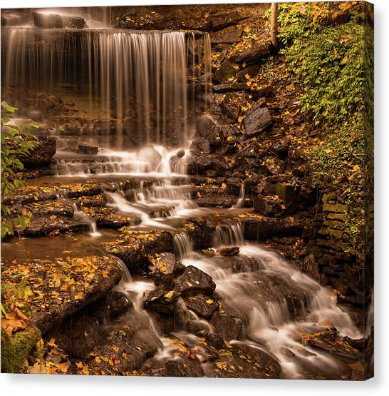 Canvas Print featuring the photograph Autumn Foliage At West Milton by Dan Sproul