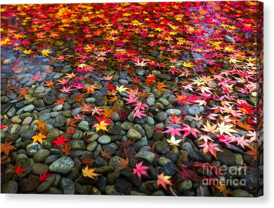Japanese Gardens Canvas Print - Autumn Foliage In Japan by Kanuman