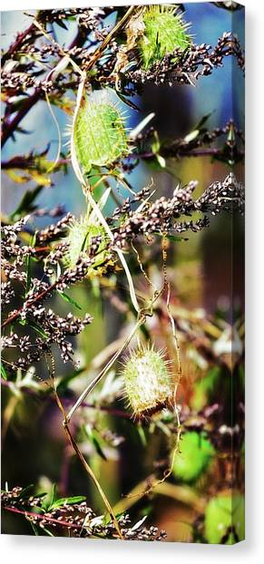 Canvas Print featuring the photograph Autumn Fun Tapestry by Tatiana Travelways