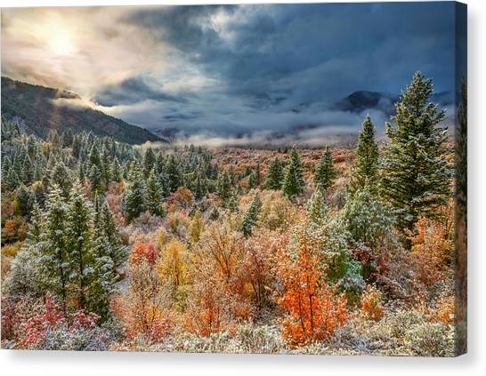 Autumn Grandeur Canvas Print by Leland D Howard