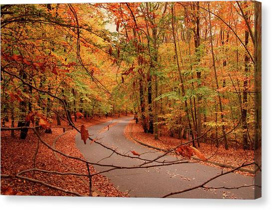 Autumn In Holmdel Park Canvas Print