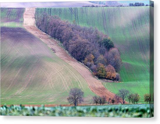 Canvas Print featuring the photograph Autumn In Moravia 10 by Dubi Roman