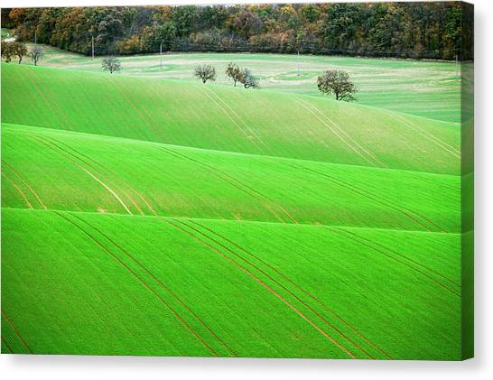 Canvas Print featuring the photograph Autumn In Moravia 12 by Dubi Roman
