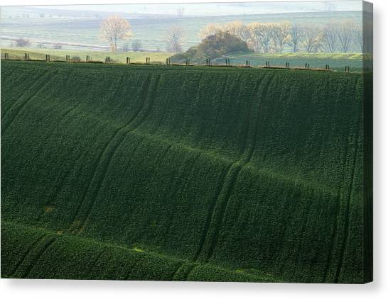 Canvas Print featuring the photograph Autumn In Moravia 11 by Dubi Roman