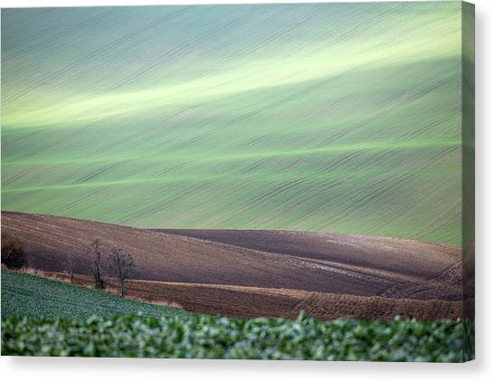 Canvas Print featuring the photograph Autumn In Moravia 4 by Dubi Roman