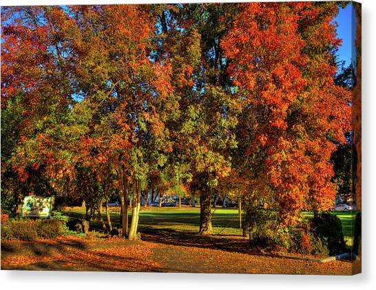 Canvas Print featuring the photograph Autumn In Reaney Park by David Patterson