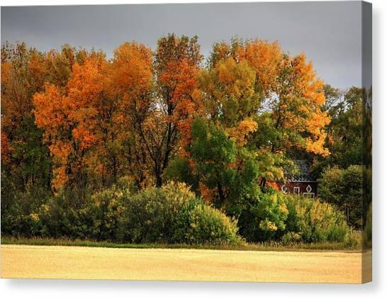 Autumn Is Nigh  Canvas Print