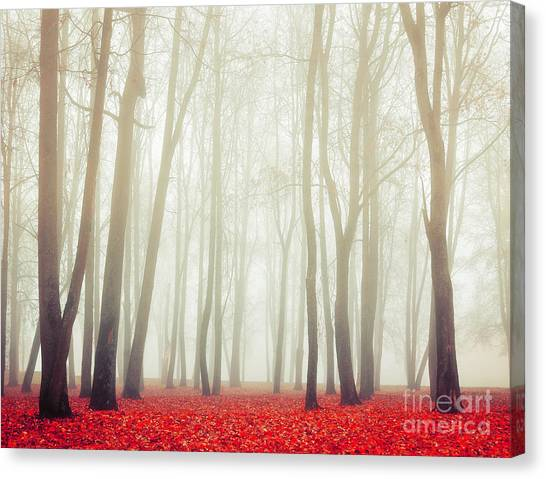 Stunning Canvas Print - Autumn Landscape With Tall Bare Trees by Marina Zezelina
