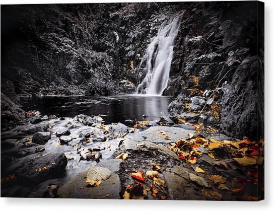 Autumn Leaves At Glenoe Canvas Print