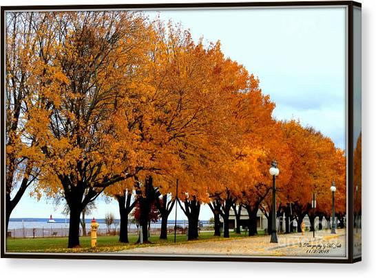 Autumn Leaves In Menominee Michigan Canvas Print