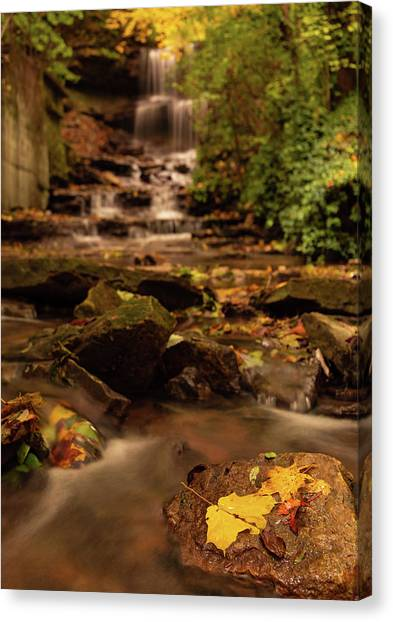 Canvas Print featuring the photograph Autumn Leaves West Milton Waterfall by Dan Sproul