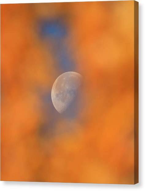 Canvas Print featuring the photograph Autumn Moon by Dan Sproul