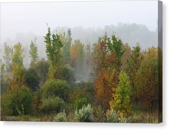 Canvas Print featuring the photograph Autumn Morning Fog by Tatiana Travelways