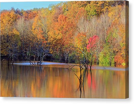 Canvas Print featuring the photograph Autumn Reflections by Angela Murdock