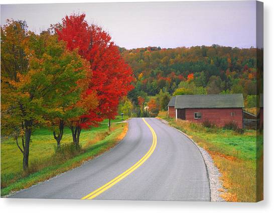 Autumn Road Canvas Print by Denistangneyjr
