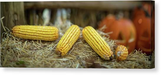 Indian Corn Canvas Print - Autumn Scene Panorama by Steve Gadomski