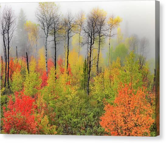 Autumn Shades Canvas Print by Leland D Howard