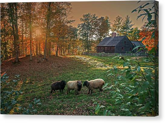 Autumn Sunset At The Old Farm Canvas Print
