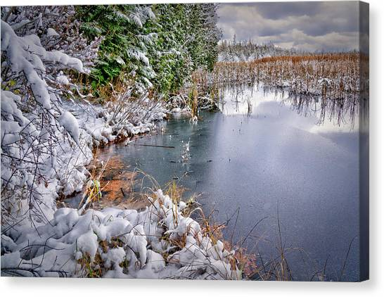 Autumn To Winter Canvas Print