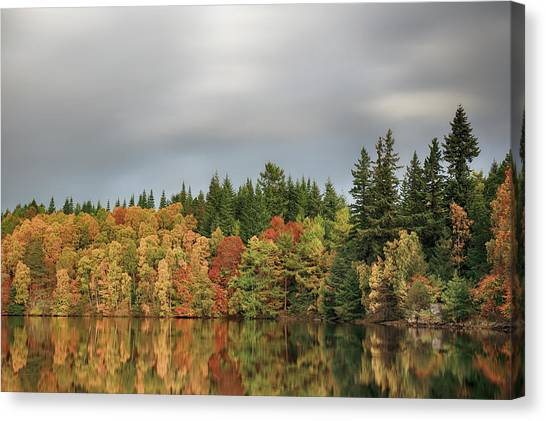 Canvas Print featuring the photograph Autumn Tree Reflections by Grant Glendinning