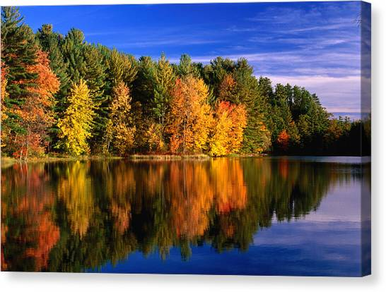 Autumn Trees In New Hampshire,new Canvas Print by Lonely Planet