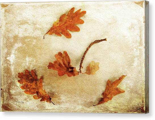 Canvas Print featuring the photograph Autumn Twist by Randi Grace Nilsberg
