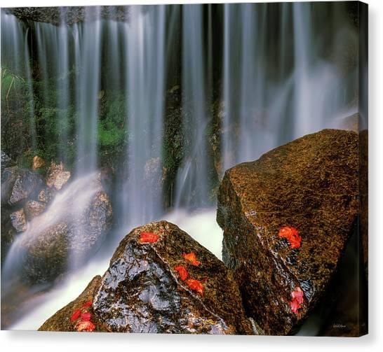 Autumn Waterfall Canvas Print by Leland D Howard