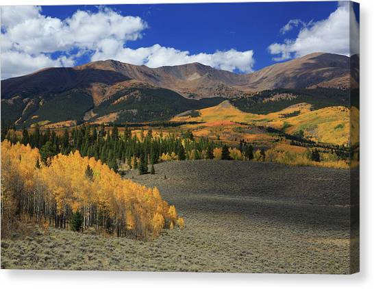 Offroading Canvas Print - Autumn's Glory by Bridget Calip