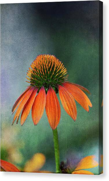 Canvas Print featuring the photograph Awaiting  Pollination by Dale Kincaid
