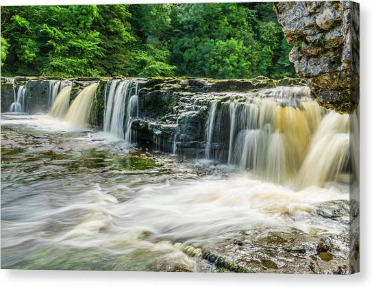 Aysgarth Upper Falls, Yorkshire Dales Canvas Print by David Ross