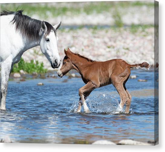 Baby's First River Trip Canvas Print