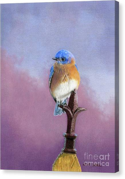 Victorian Garden Canvas Print - Backyard Bluebird by Sarah Batalka