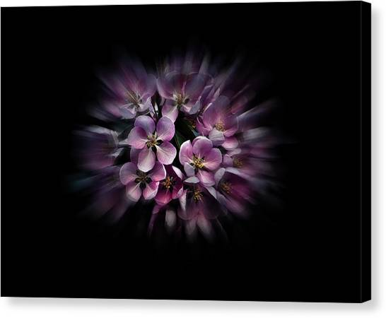 Canvas Print featuring the photograph Backyard Flowers 47 Color Flow Version by Brian Carson