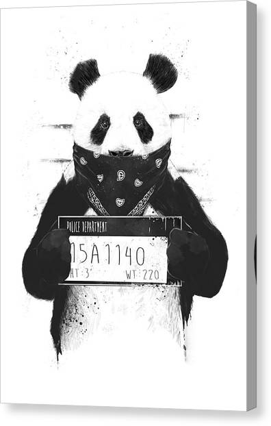 Black And White Canvas Print - Bad Panda by Balazs Solti