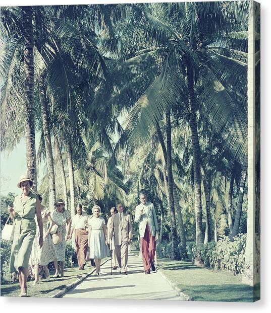 Bahamas Palm Trees Canvas Print